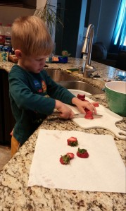 Kona slices strawberries to pack for our lunch.