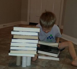 With three toilet paper rolls, he discovered he could place more books on the structure.