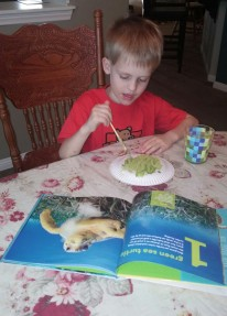 Kona is painting a paper plate for his sea turtle project.