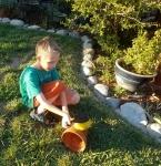 Tigger cleaned the terracotta pot.