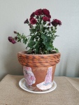 I added a colorful mum to the pot to complete the centerpiece.