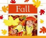 Fall by Cynthia Amoroso