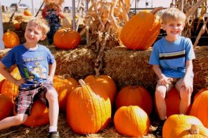 The grands always enjoy a trip to a nearby pumpkin patch.