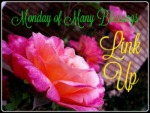 Monday-of-Many-Blessings-Link-Up